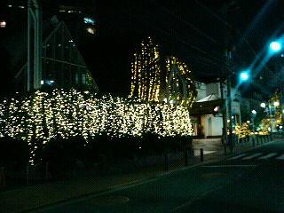 立教通りの『RIVIERA(リビエラ)』は、一年中クリスマス?