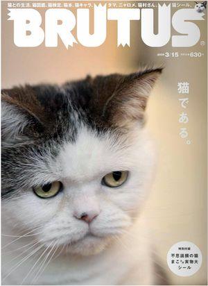 雑誌『BRUTUS』658号は猫特集?
