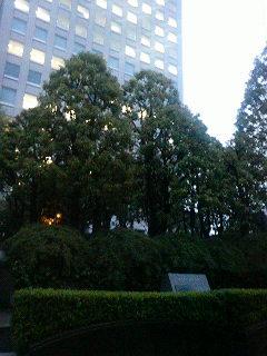 IBM箱崎事業所