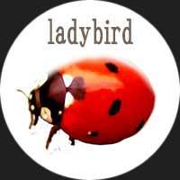 ライラの冒険 ダイモン判定 テントウムシ Ladybird